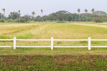 вынос границ земельного участка